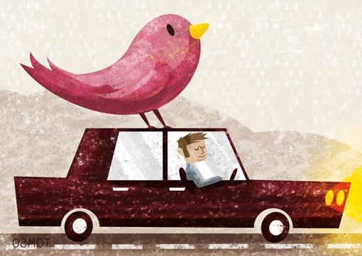Voiture + oiseau