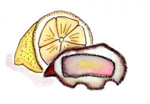 huitre-c-grave-docteur