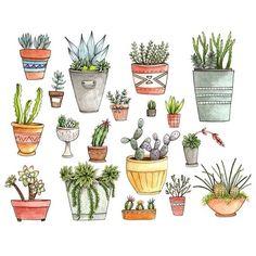 Dans ma maison naturo - plantes