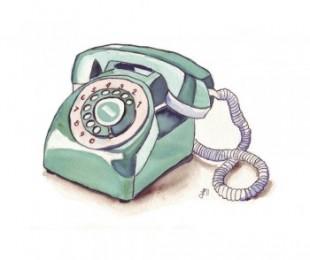 Dans ma maison naturo - téléphone