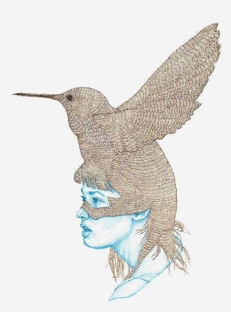 Bio-colibri
